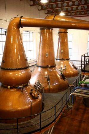 Pot stills at DYC