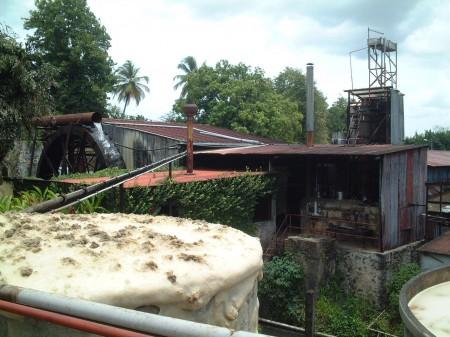 Guadeloupe rhum fermentation tank